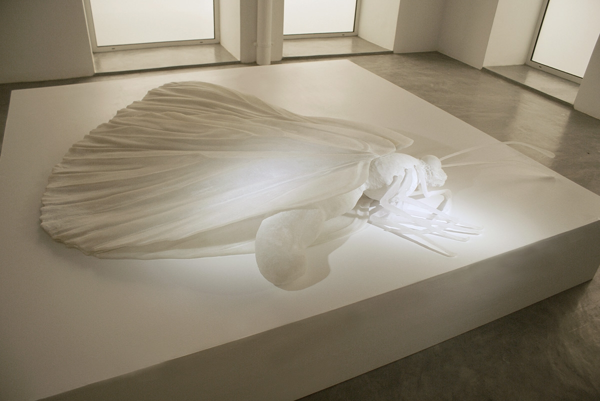 Nicène Kossentini. Untitled (The Butterfly) 2014. Sculpture. Translucent fibreglass, Japanese fabric and resin, 180 x 150 cm. Edition of 8. Courtesy of the artist.
