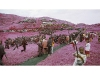 ©Richard Mosse. Better The Devil You Know